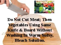 Cutting Meat & Vegetables On same Board Without Washing/Scrubbing In Warm, Sudsy, Bleach Water Is A Negative!