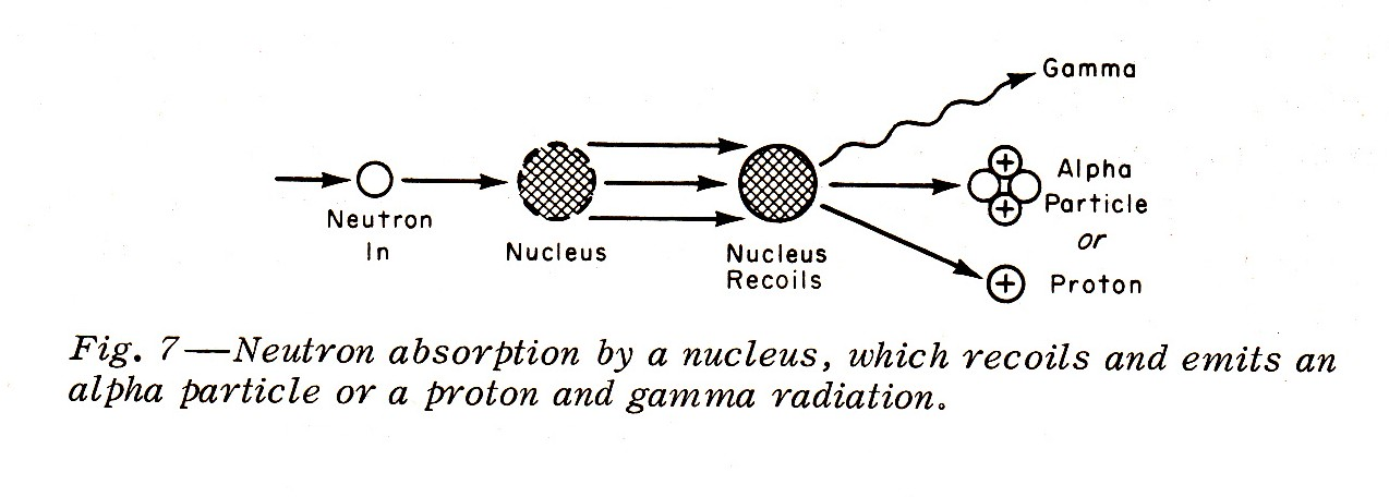 Neutron Absorption By A Nucleus!